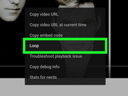 Loop-YouTube-Videos-Step-28-Version-2